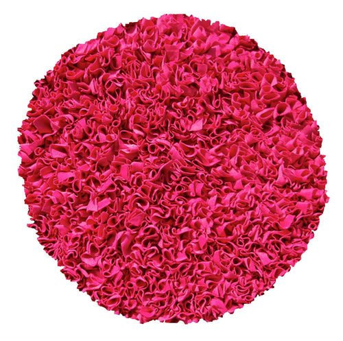 Shaggy Raggy Raspberry Area Rug