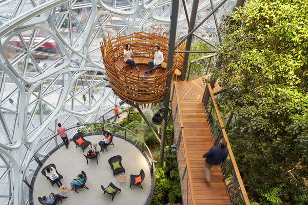 The Spheres - Seattle, Washington - Biophilic Design | Human Nature Designs