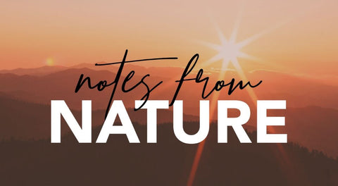 Notes From Nature - Sign Up | Human Nature Designs