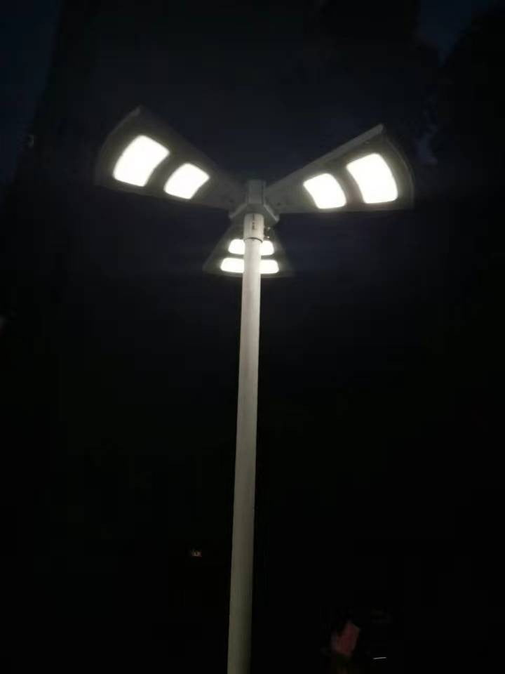 Commercial Solar LED Decorative Lighting