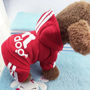 OnlyPaw CutieHoodie® (Free Shipping) - ONLYPAW