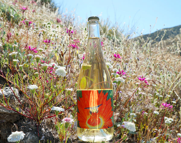 Desert Blossom Honey Sparkling Mead Wine