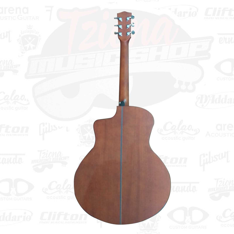 Acoustic Guitar Sr. no pick up