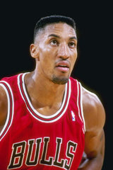 scottie pippen flat top