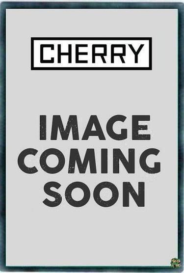 Batteryman Solar - FLOD-EN027 - Common 1st Edition-Cherry Collectables