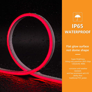 12V 6x12mm Red LED Silicone Neon Light -16.4ft -