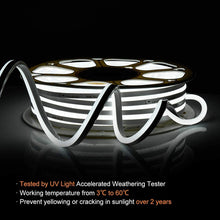 Load image into Gallery viewer, 110-120V 82ft 6500K Cool White LED Neon Rope Light Shine-Decor