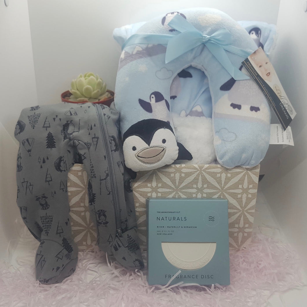Blue Baby Hamper