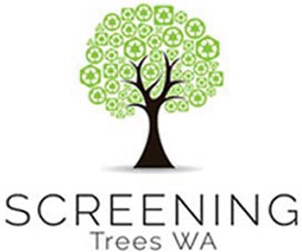 Screening Trees WA
