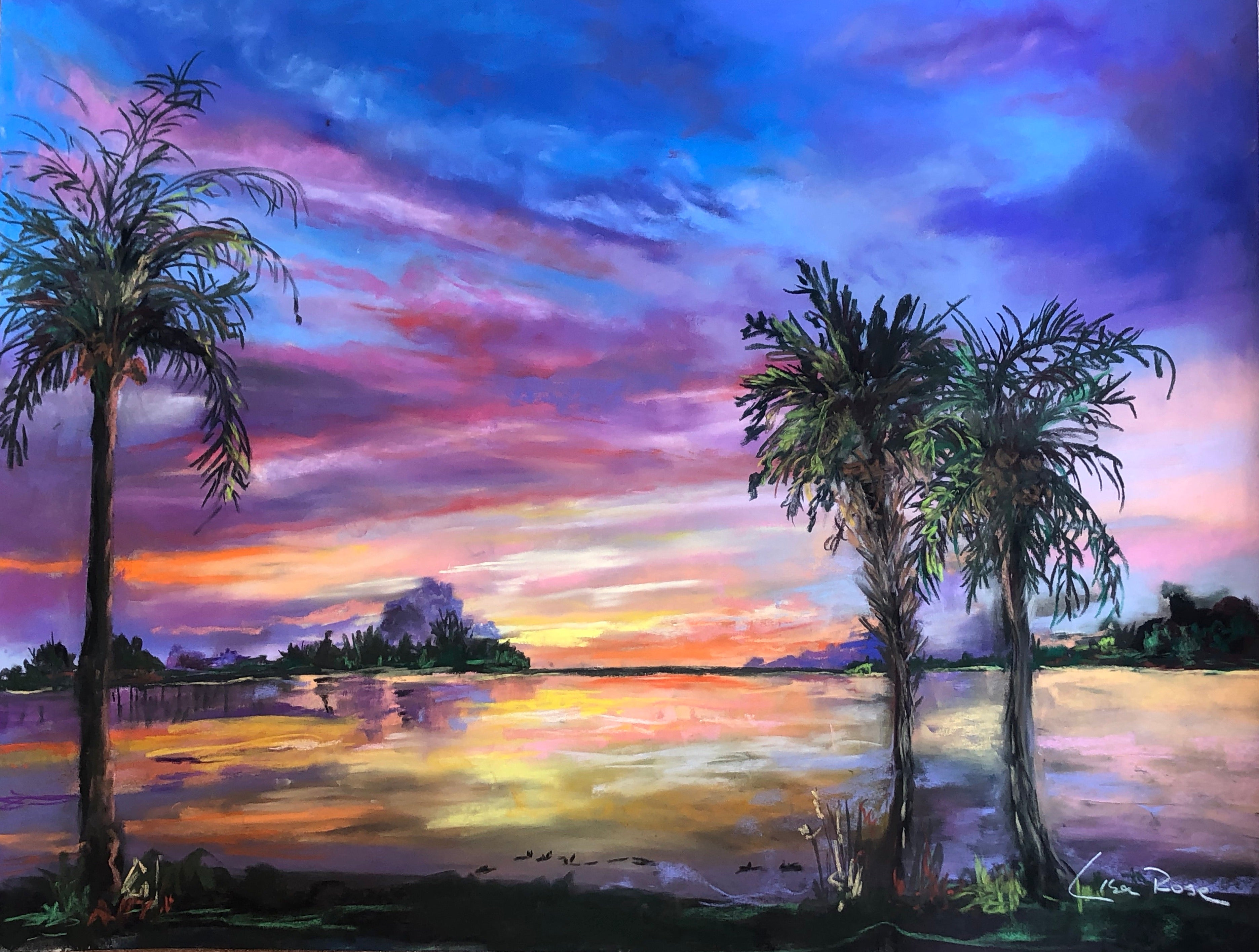 Sunrise 2 at Old Palm - Lisa Rose Fine Art