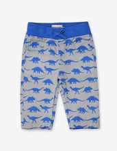 Load image into Gallery viewer, Dinosaur Twill Baby Trousers