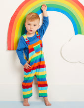 Load image into Gallery viewer, Organic Multi Stripe Dungarees