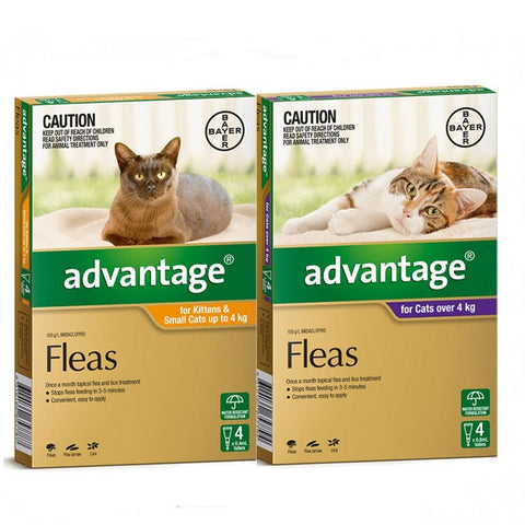 Flea Treatment - Cat - Advantage