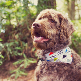 Bandana Collar - Camp Silver