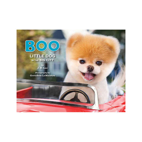Boo: Little Dog in the Big City Book