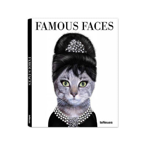 Pets Rock Famous Faces Small Book