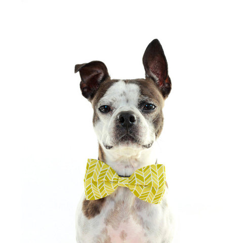 Bow Tie - Geometric Yellow and Olive Green
