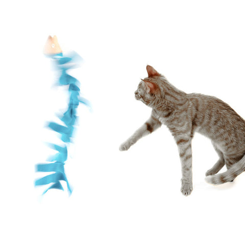 Cat-Cha-Trout - Cat Toy