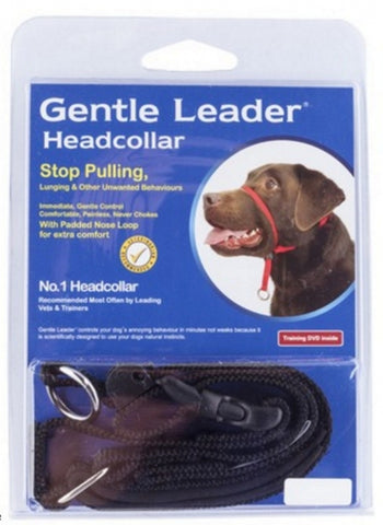 BLACK Gentle Leader Head Collar - HALTI