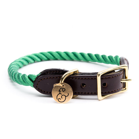 Found My Animal - Dog Collar - Miami Rescue