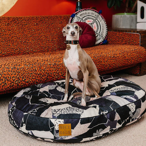 Dog Bed - Scrap That