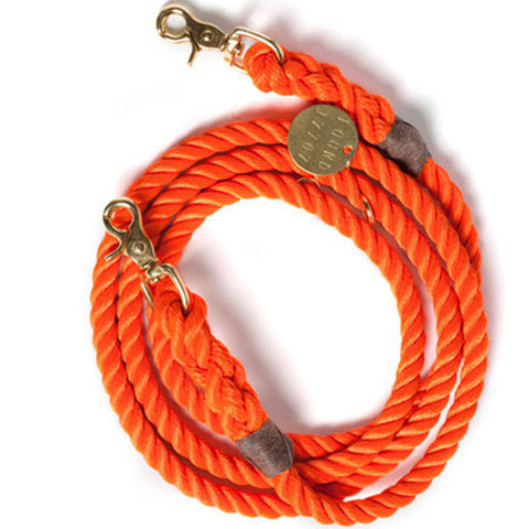 Found My Animal - Dog Leash - Rescue Orange