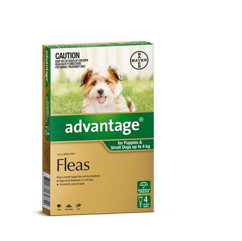 Flea Treatment - Dog - Advantage