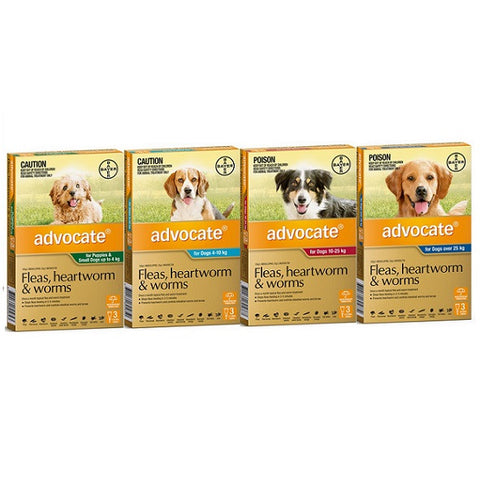 Flea Treatment - Dog - Advocate