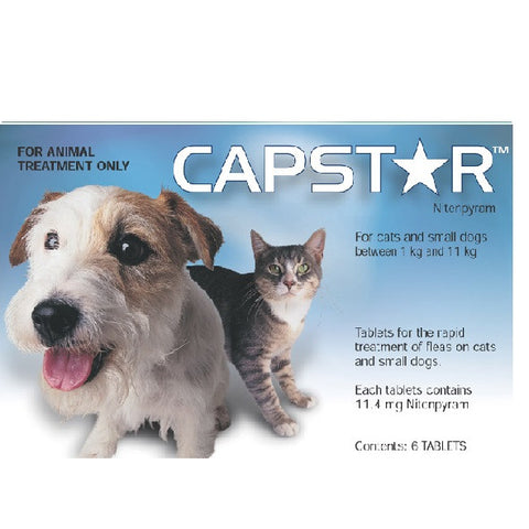Flea Treatment - Capstar