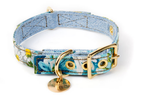 Found My Animal - Dog Collar - Daisy Denim Canvas