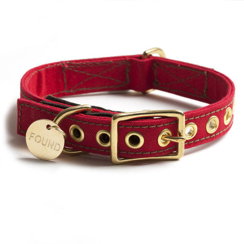 Found My Animal - Dog Collar - Holiday Canvas