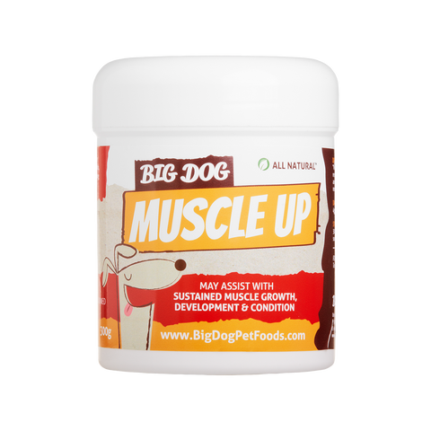 Big Dog Muscle Up Supplement for Muscle Growth