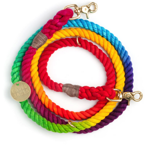 Found My Animal - Dog Leash - Prismatic