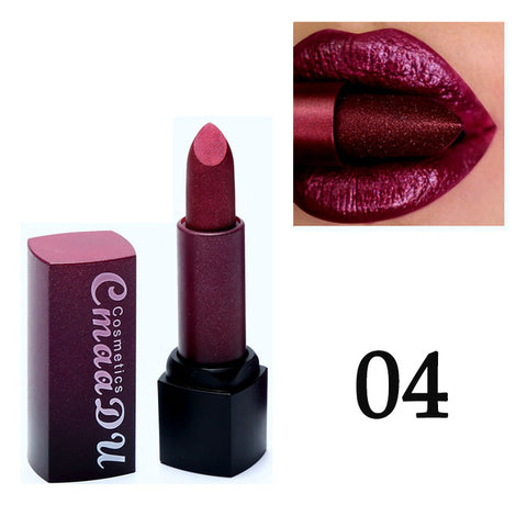 Professional Lips Makeup Lip Stick