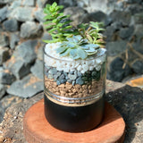 Gardens by the Bay - The Mini Garden Series - Father's Day Collection - Duke Series D