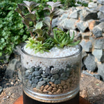 Gardens by the Bay - The Mini Garden Series - Father's Day Collection - Duke Series C