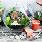Eco Explorers! - Plant Habitats Workshop (for 5 to 6 years old)