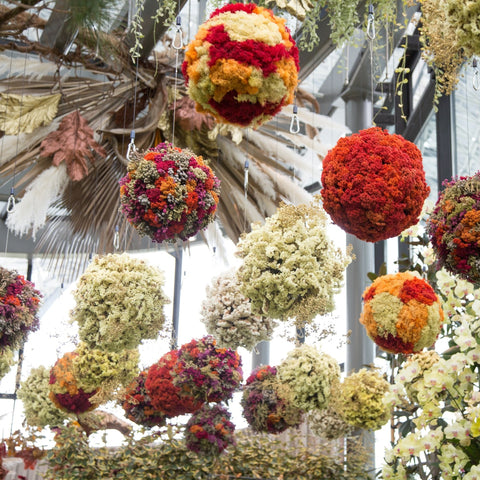 Colours in Bloom - Hanging Floral Sphere Workshop