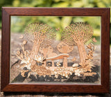 Gardens by the Bay - Arch Collection - FAIRYLAND FRAME