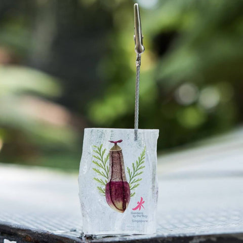 Gardens by the Bay - NEPENTHES COLLECTION - NEPENTHES PAPERCLIP