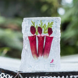 Gardens by the Bay - NEPENTHES COLLECTION - NEPENTHES PAPERWEIGHT (MEDIUM)