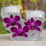 Gardens by the Bay - Preserved Orchid Collection - PRESERVEDDENDROBIUMORCHIDDOUBLETEALIGHT