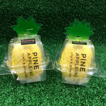 Gardens by the Bay - Plant DIY Collection - Pineappleing - Plant Growing Kit