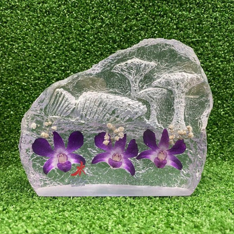 Gardens by the Bay - Supertree Preserved Orchid Collection - SCENERY PRESERVED DENDROBIUM ORCHID PAPERWEIGHT (LARGE)