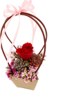 Gardens by the Bay - Plant Collection - Limited Edition -  Tender Love Flower Bouquet in a Bag_2