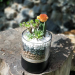 Gardens by the Bay - The Mini Garden Series - Father's Day Collection - Duke Series J