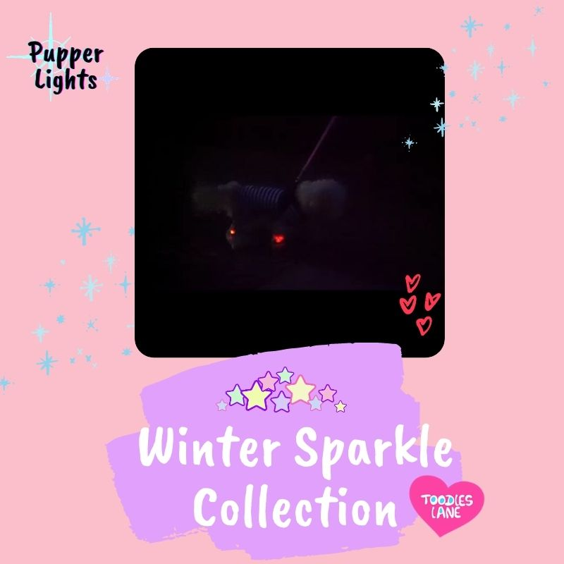 Winter Sparkle Collection