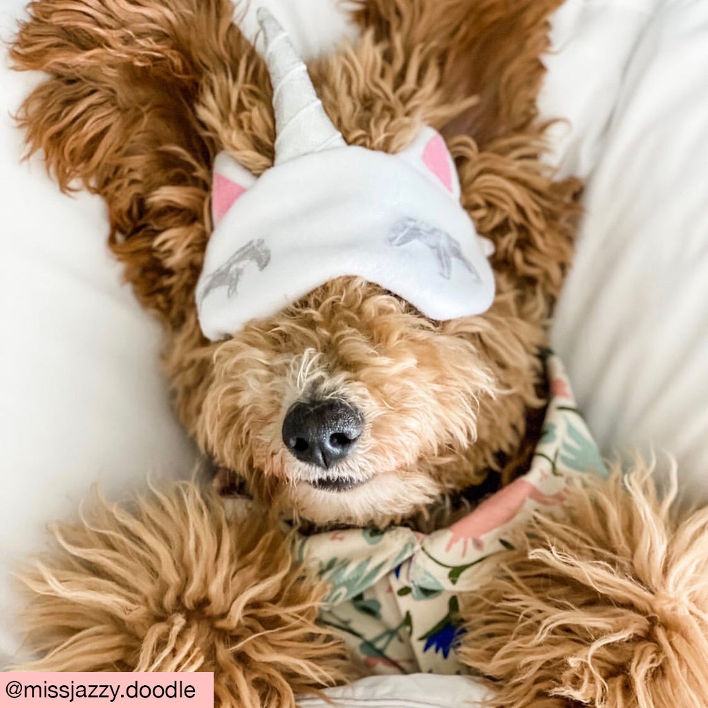 Magical Doggie Sleep Mask