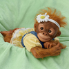 Poseable Lifelike Baby Monkey Reborn Doll Named Kareny