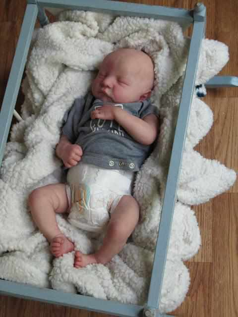 20 '' Adorable Elspeth Preemie Reborn Baby Dolls